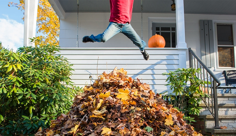 Person jumping into leaves in front of house