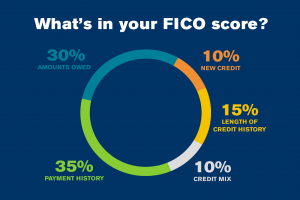 Graph of what's in your FICO score