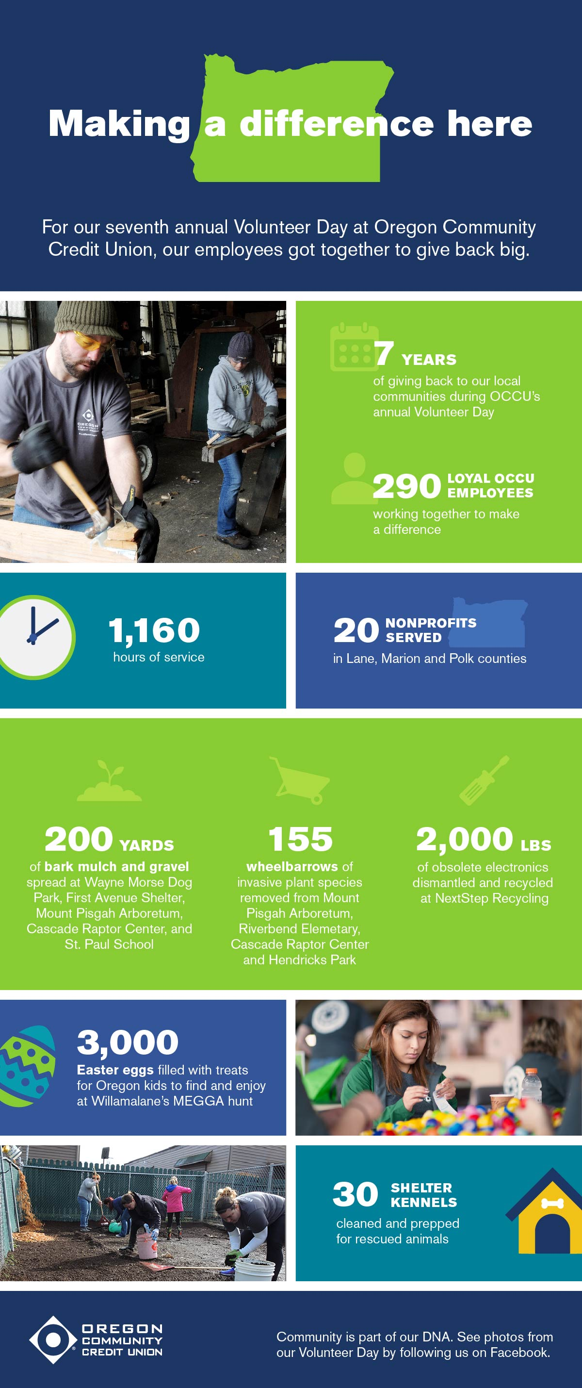 2017 Volunteer Day Infographic